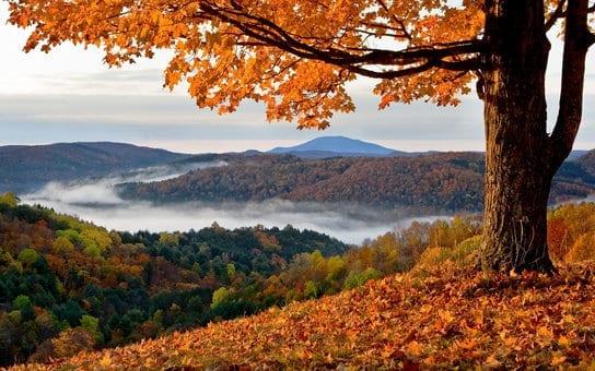 5 Best Autumn Travel Destinations